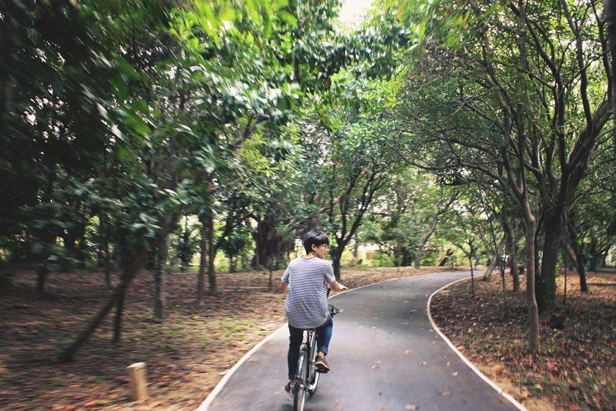 Cycling at Bang Krachao