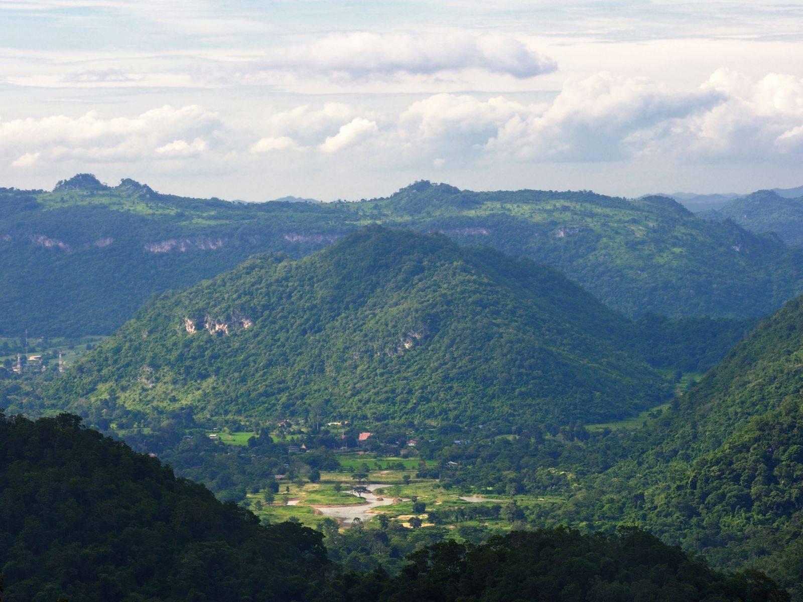 Khao Yai National Park and More