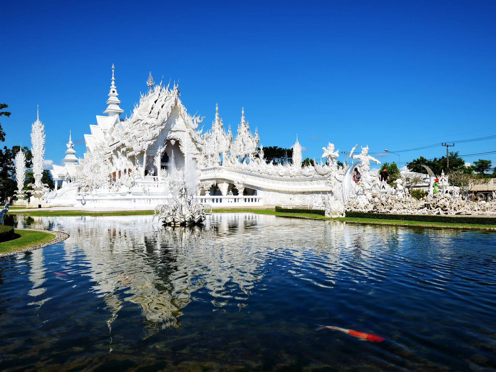 Hot Springs, Doi Chang, White Temple and Singha Park