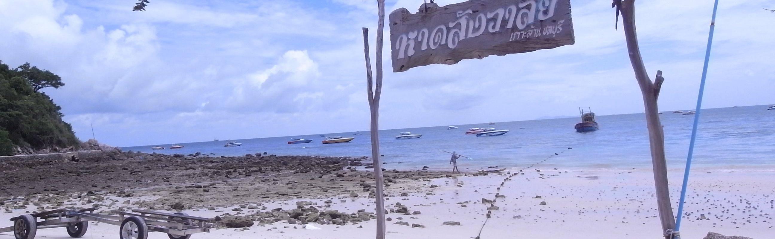 Wonderful Pattaya City Tour
