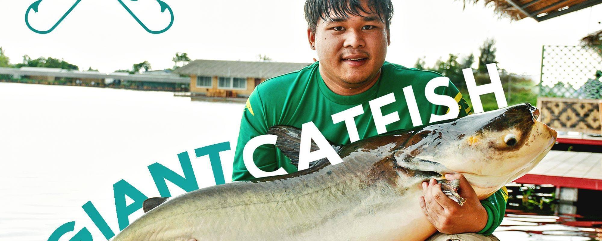 Fishing for Giant Catfish and Carp