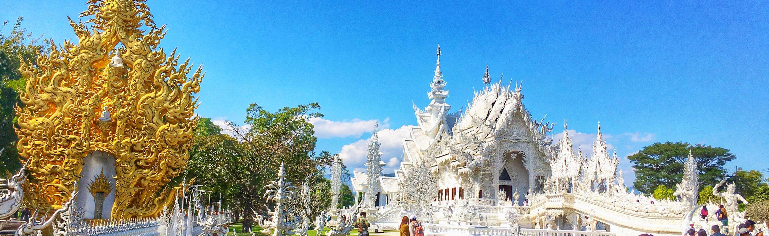 Perfect Day in Chiang Rai [White Temple, Black House, Chui Fong Plantation, Singha Park]
