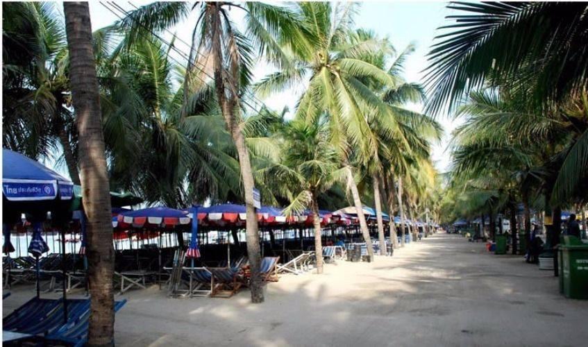 Bangsaen Beach Tour and Seafood Market!