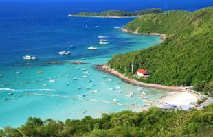 Explore the Beautiful Island of Koh Lan in Pattaya