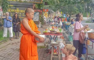 Alms giving - Monks Food Offering Spiritual Morning Buddhist (Local Culture Tour)