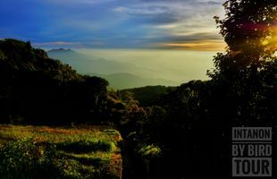 Sunset at the highest mountain of Thailand, Doi Intanon