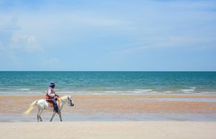 Local Food Tasting & Hitting the Beach in Hua Hin