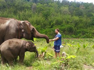 Eco-Friendly Elephant Sanctuary