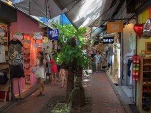 The biggest and Cheapest Market at Chatuchak Weekend Market