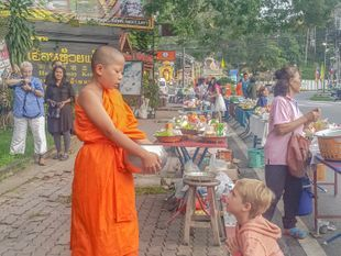 Alms giving - Monks Food Offering spiritual morning Buddhist local culture tour