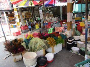 Go Shopping at Weekend Market (Chatuchak)