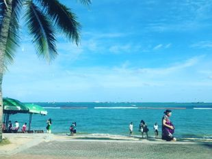 See Pattaya City, Jomtien Beach and Floating Market