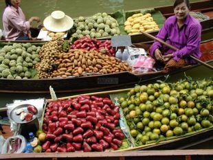 Discover the Famous Damnoen Saduak Floating Market On a One-Day Tour