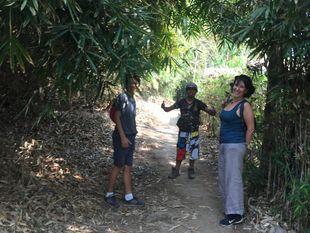 Visit 5 Waterfalls in Jungle and Bamboo Rafting