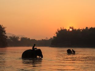 Kanchanaburi: Historical Route with Elephant Sanctuary