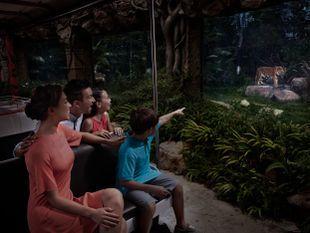 บัตรเข้าสิงคโปร์ไนท์ซาฟารี ราคาพิเศษ (Singapore Night Safari)