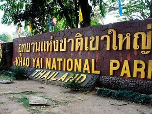 Khao Yai National Park Full Day and Night Tour. ( Day trip from Bangkok)