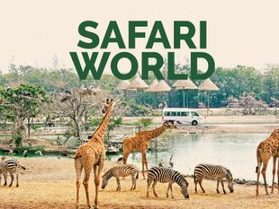 Safari World: The Wild Side of Bangkok