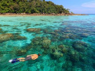 Surin Islands premium snorkeling day trip