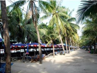 Bangsaen Beach Tour and Seafood Market!