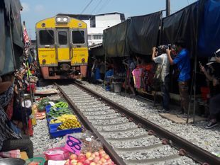 [Joined Tour] Bangkok – Ampawa Floating Market & Firefly  Talad Rom – Hoob or Train Market (Only Fri-Sat-Sun)