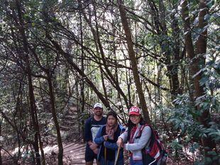 Doi Inthanon and Mae Ya Waterfall