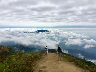 "Doi Inthanon and ""Kew Mae Pan"" trekking(Open 1 November till 31 may)"