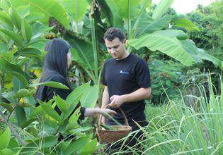 Visit the organic farm