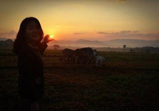 sunrise in the village