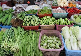 Fresh Produce purchased daily