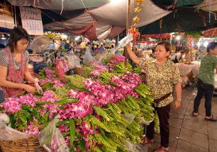 Let's cultivate Thai lifestyle and its culture for a day