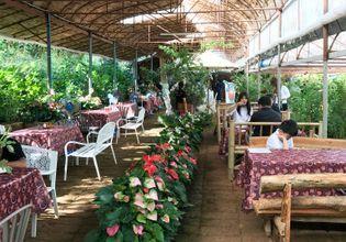 Royal Rose Garden Restaurant