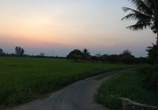 Rice farm 2 km for bike!!