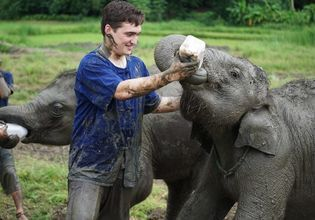 Responsible, Cruelty-Free Tour of Chiang Mai's Elephant Sanctuary