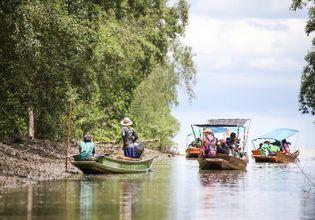Experience Klong Khon on a Mangrove Forest Tour