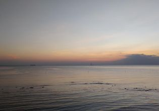 Observe Seagull at Sunset in Bang Pu & Visit Train Market Srinakarin