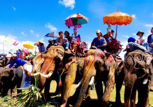 Hang out with Elephants & Cooking Class with the Local People of Surin