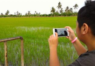 Taking pictures of this beautiful scenery in the rice fields.