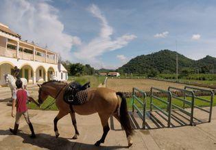 Horse Trekking to Explore the true culture