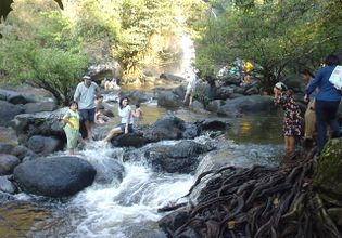 Relax and Get Back to Nature with a Tour of Khao Yai National Park