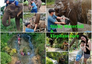 Sticky waterfall & Elephant Care
