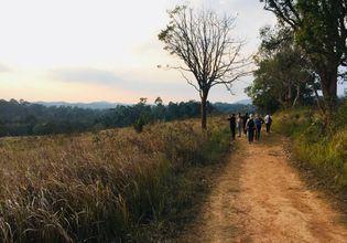 Hiking at Khao Yai National Park