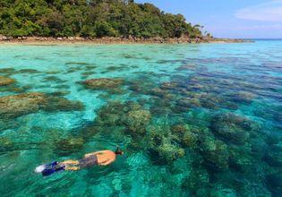 Amazing snorkeling site