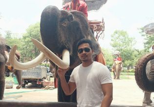 Elephant Palace