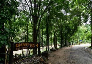 Stunning National Park soft trekking nature explorer, visit Royal temple & stop at Locals Market