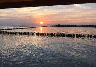 See sunset at Bangkokseaview restaurant