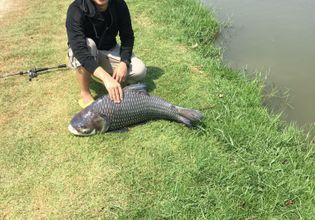 Lure Fishing with Thai Local!