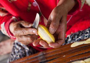 Traditional Livelihoods  in Battambang (Half Day: Afternoon)
