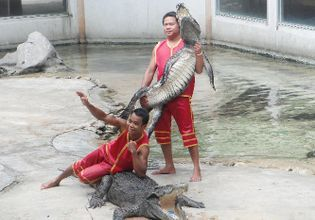 Samut Prakarn Crocodile Farm & Zoo