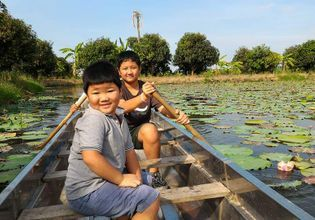 Enjoy their time paddling in the lotus pond.